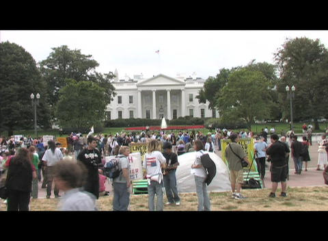 Long-shot protestors demonstrating on the White House lawn in Washington, DC Footage