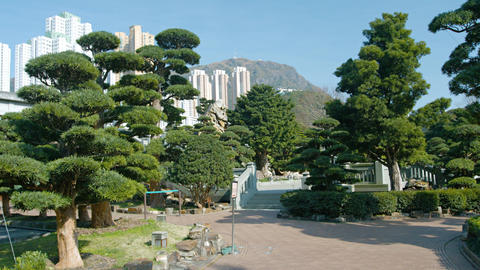 Ornate Gardens of Chi Lin Nunnery Contrasted with Highrise Architecture Footage