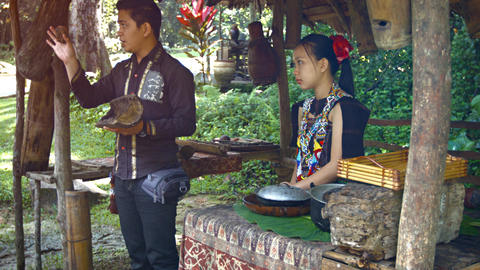 Tour guide gives educational talk about traditional beekeeping practices Footage