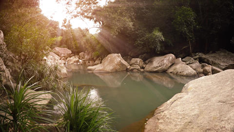 Idyllic Mountain Stream Flowing through Wilderness Paradise. with Sound Footage