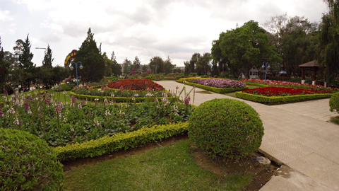 Neat hedges and colorful blooms at Flower Garden Park in Dalat Footage
