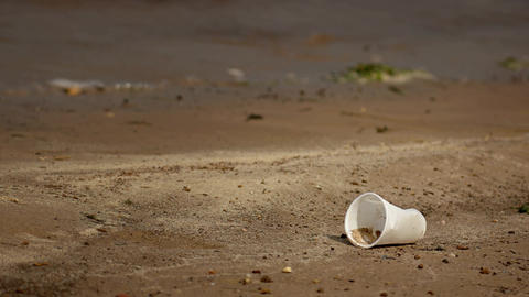 Discarded Plastic Cup on a Poluted River Bank. Video 4k Live Action
