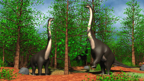 Brachiosaurus dinosaurs eating fresh leaves from the treetops Animation