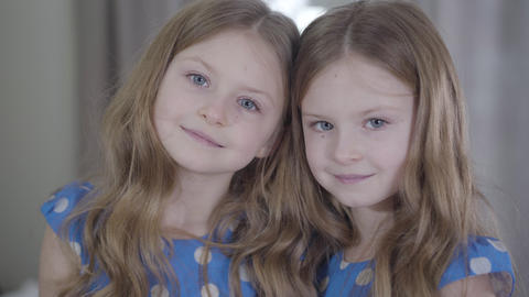 Portrait of beautiful little twin sisters posing indoors. Calm children looking Live Action