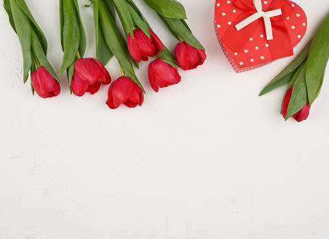 bouquet of red blooming tulips with green leaves, wrapped gift t Fotografía