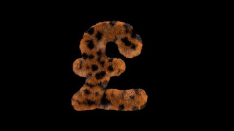 3D animated furry hairy zoo leopard text typeface with alpha channel GBP L Animation