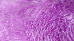 FLUFFY FURRY TEXTURE EXTREME CLOSE UP STOCK FOOTAGE* Live Action