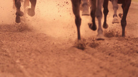 Horse Racing. Feet. Slow Motion Footage