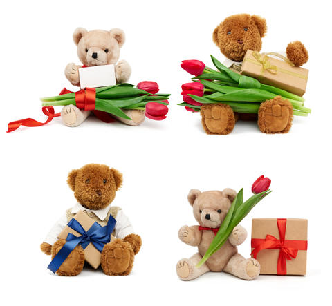 set of beige and brown teddy bears sitting on an isolated white Fotografía