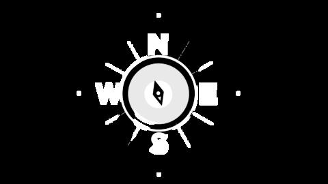 Logo ani Animation