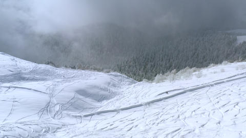 Drone view snowboarder riding freeride on snowy hills in winter mountain on forest landscape. Aerial Live Action