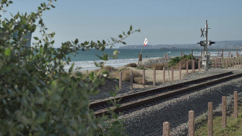 Scenic Beautiful view thru green plants agave aloe vera San Clemente Pier in Live Action