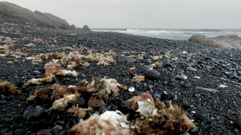 4k closeup video of abandoned ocean beach with black and sand rocks on cold Live Action