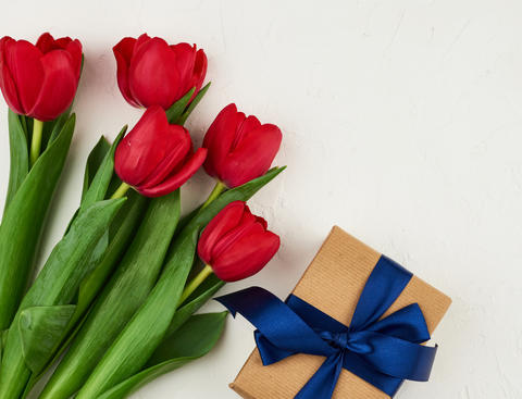 bouquet of red blooming tulips with green leaves, wrapped gift i Fotografía