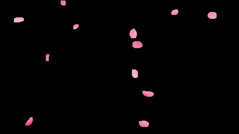桜舞う 量少な目 フリー HD QTアルファ付き