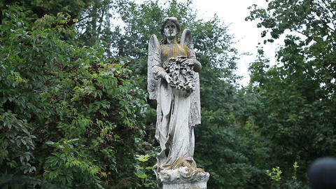 Beautiful statue of angel at the old cemetery Footage