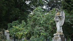 Sculpture of the mourning angel at the graveyard Footage