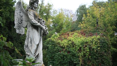 Vintage statue of winged angel at the graveyard Footage