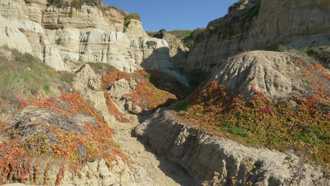 Scenic Landscape Marine bluffs cliff sand canyon on the beach, San Clemente Live Action