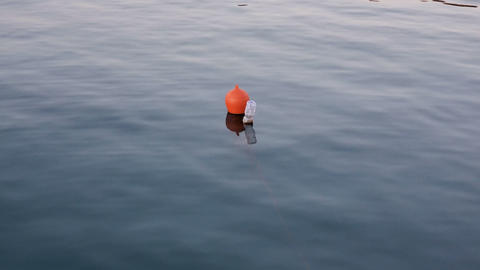 Plastic bottle buoy floating on sea water surface,dirty ecosystem,industrial Live Action
