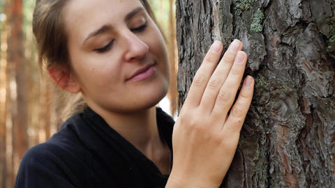 4k closeup video of young woman gently touching with hand and soothing big tree Live Action