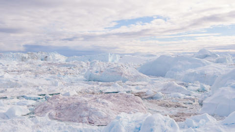 Greenland Iceberg landscape of Ilulissat icefjord with giant icebergs Live Action
