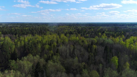 Flying above beautiful spring forest under blue sky near a small city Live Action