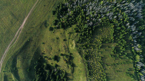 Aerial view of field and forest Live Action