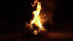 Big bonfire at night, firewood in flames ライブ動画
