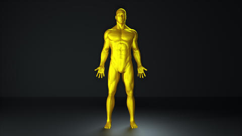 Demonstration of a golden man. Computer generated background for computer game Live Action