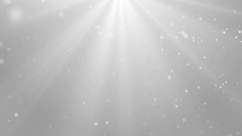Particles white bright glitter bokeh dust abstract background loop 03 Animation