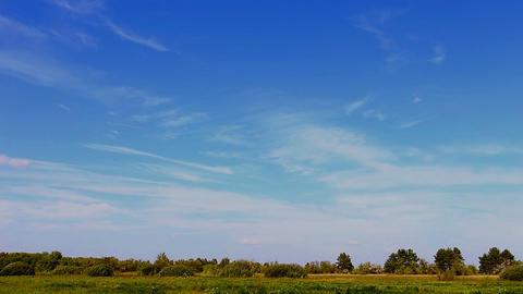Beautiful blue sky over the meadow 2 ビデオ