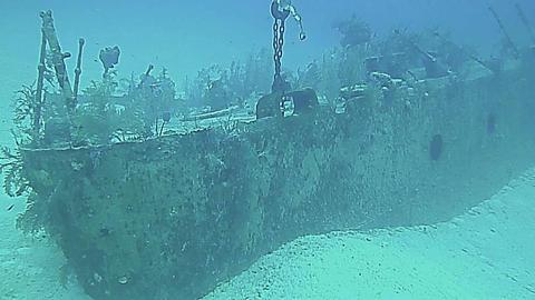 Underwater landscape in Grand Cayman Footage