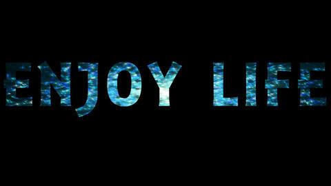 Enjoy Life Animation