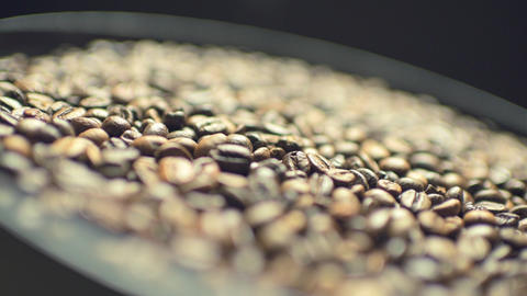 Coffee beans on rotating plate Live Action