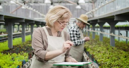 Portrait of professional Caucasian female agronomist in eyeglasses marking Live Action