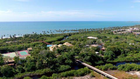 Aerial view of tropical palm trees forest and ocean on the background, Praia do Live Action