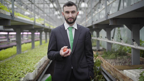 Portrait of smiling Caucasian man in suit throwing up and catching tomato Live Action