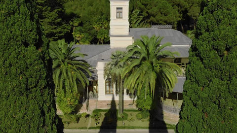 Mansion in a beautiful place with palms Live Action
