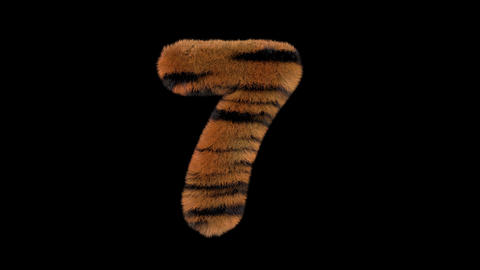 3D animated furry hairy zoo Tiger text typeface with alpha channel 7 Animation