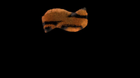 3D animated furry hairy zoo Tiger text typeface with alpha channel Accent 2 Animation