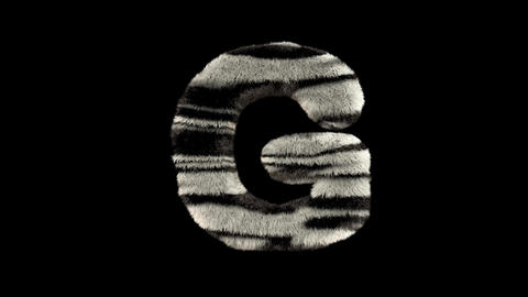 3D animated furry hairy zoo zebra text typeface with alpha channel G Animation