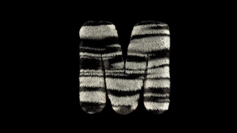3D animated furry hairy zoo zebra text typeface with alpha channel M Animation