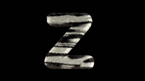 3D animated furry hairy zoo zebra text typeface with alpha channel Z Animation