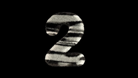 3D animated furry hairy zoo zebra text typeface with alpha channel 2 Animation