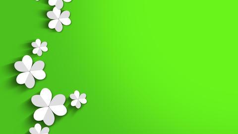Motion green shamrocks, Saint Patrick Day animation background CG動画