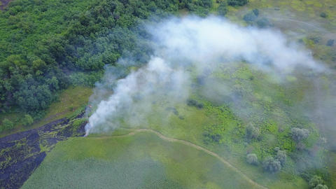 Aerial shot of the terrible phenomenon on Earth - a fire. Flaming fire burns Live Action