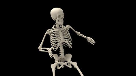 Skeleton Close Up Animation