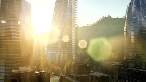 city skyscrapes with lense flairs at sunset GIF