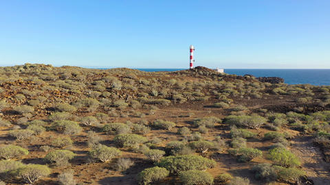 View from the height of the lighthouse Faro de Rasca and nature reserve on Live Action
